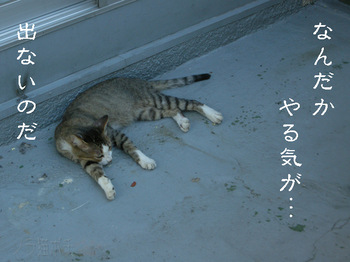mukiryoku_neko.jpg
