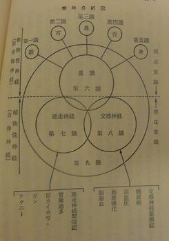 s-精神分析図.jpg
